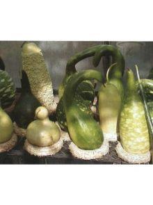 Kalebassen mix, Mixture lagenaria (zaad, Mengsel van 10 verschillende soorten)