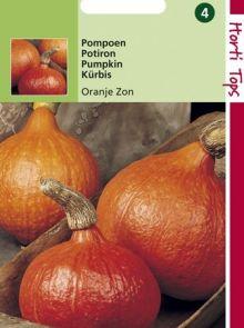 Pompoen Oranje Zon (Pompoenen zaad)
