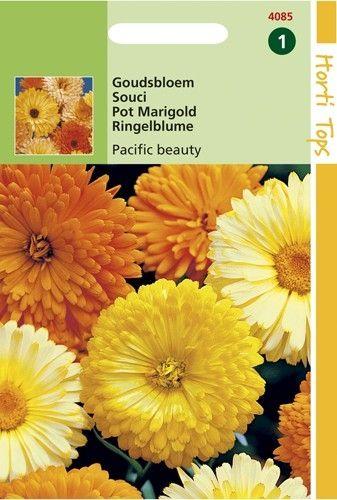 Calendula officinalis Pacific Beaauty (zaad Goudsbloem, gemengde kleuren)