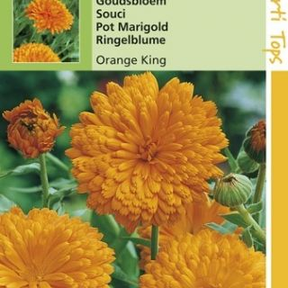 Calendula officinalis Orange King (zaad goudsbloem)