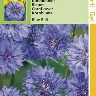 Centaurea cyanus Blue Ball (zaad korenbloem)