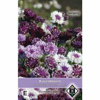 Centaurea cyanus Classic Magic (zaad korenbloemen mengsel)