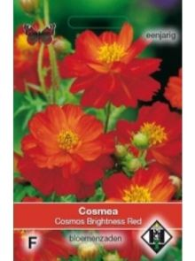 Cosmea Brightness Red (zaad oranjerode Cosmos)