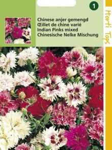 Dianthus sinensis (zaad Chinese anjer, dubbelbloemig gemengd)