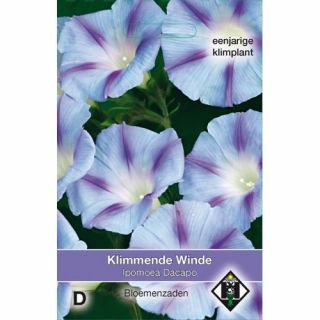 Ipomoea purpurea Dacapo (zaad Klimmende winde met helderblauwe trompet bloemen)