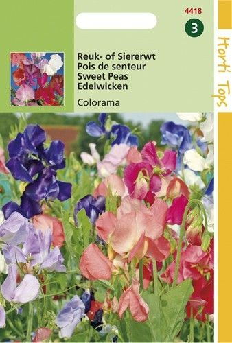 Lathyrus odoratus multiflora Colorama (zaad hoge Reuk- of Siererwt)