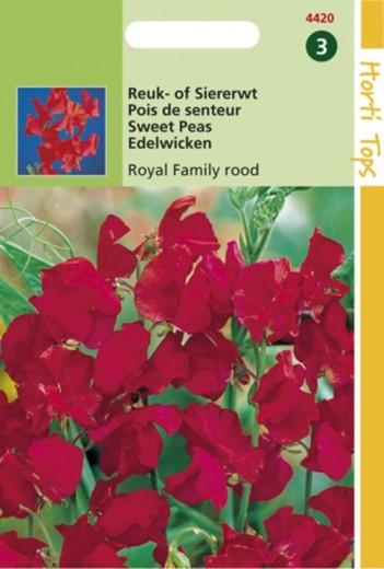 Lathyrus odoratus Royal Family rood (zaad Reuk- of Siererwt)