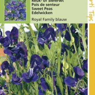 Lathyrus odoratus Royal Family blauw (zaad Reuk- of Siererwt)