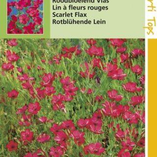 Linum rubrum (zaad Roodbloeiend Vlas)