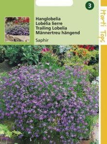 Lobelia pendula Saphir (zaad Hanglobelia)