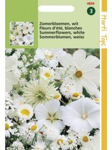 Zaadmengsel Zomerbloemen wit