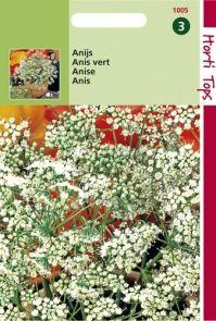 Anijs (zaad Pimpinella anisum)