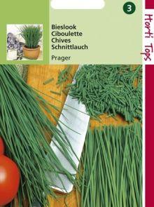Bieslook fijne (zaad Allium Prager)
