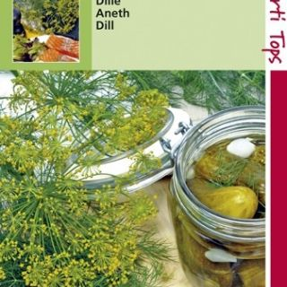 Dille (zaad Anethum graveolens)