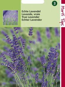 Echte Lavendel (zaad Lavandula officinalis)