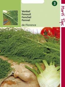 Venkel de Florence (zaad Foeniculum, knolvenkel)