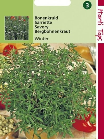 Bonenkruid Winter (zaad overblijvend Bonenkruid, 11040)