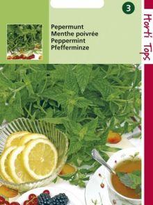 Pepermunt (zaad Mentha piperita)