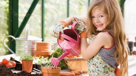 Biologisch geteelde zaden van Tuinkruiden en keukenkruiden