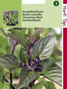 Kaneelbasilicum (zaad)