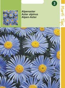 Aster alpinus (zaad Alpenaster)