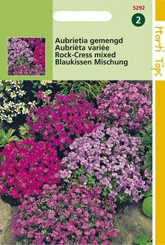 Aubrietia hybrida (zaad Aubrietia gemengd)
