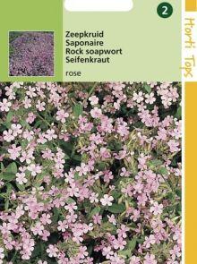 Saponaria ocymoides (zaad Zeepkruid)