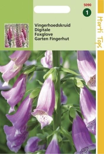 Digitalis purpurea Gloxiniaeflora (zaad Vingerhoedskruid)