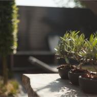 Genieten in eigen tuin