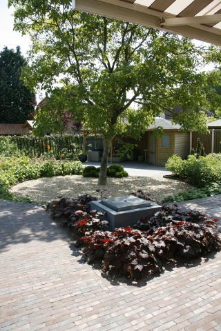 Aanleg tuin rondom oude notenboom