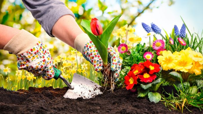 Proef de lente, bezoek onze webwinkel!