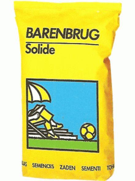 Barenbrug Solide (Graszaad voor speelgazon)