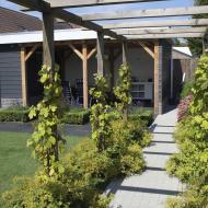 Klassieke Zeeuwse Tuin Stavenisse