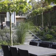 Moderne Tuin in Steenbergen