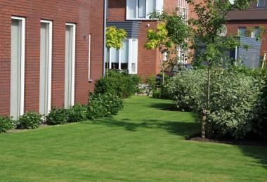Aanleg tuin in nieuwbouwwijk