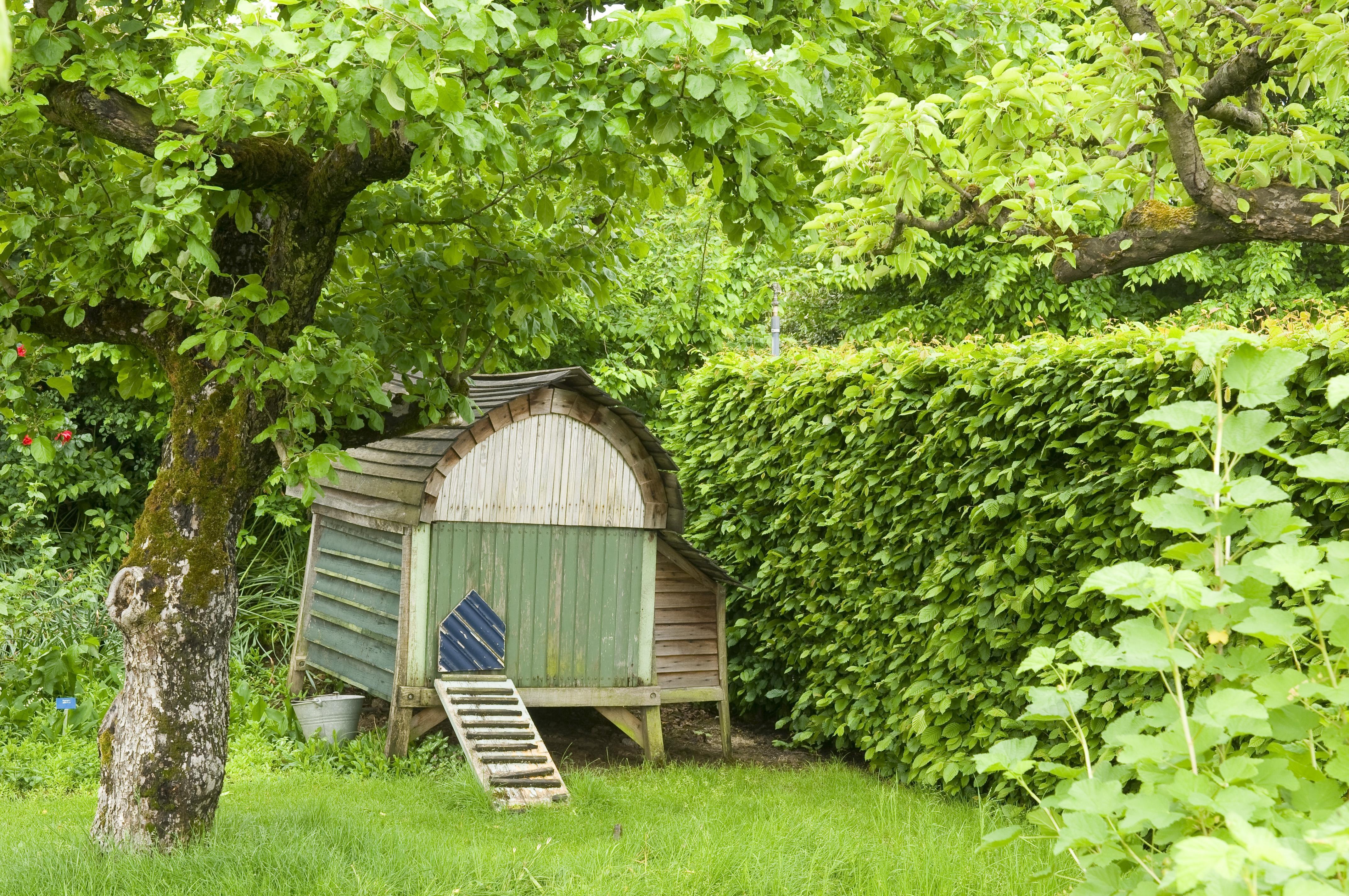 Uitgelezene Tuin met boomgaardgevoel! | De Tuinen van Appeltern SG-35