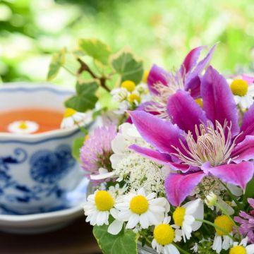 Een kopje thee uit eigen tuin!