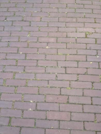 Oude hardgebakken dikformaat Harderwijk, paars genuanceerd