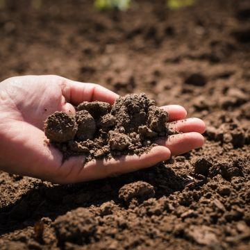 Alles wat je moet weten over de verschillende grondsoorten!