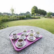 Kleurrijke onderhoudsarme tuin