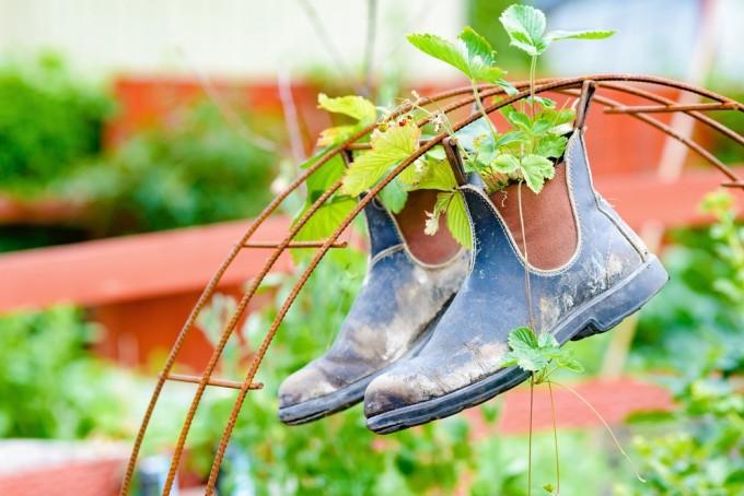 De gerecyclede tuin!