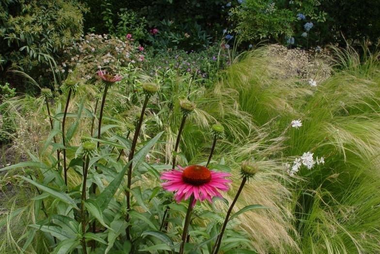Vertoeven in eigen tuin...