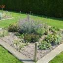 Wintergroene border met bladplanten