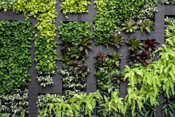 Verticaal groen