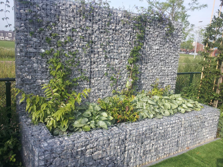 Schanskorven tuin