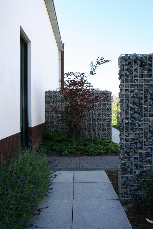 Moderne tuin met koivijver