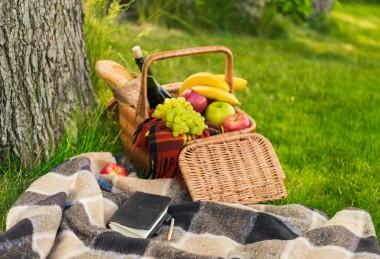 Picknick Groepsarrangement