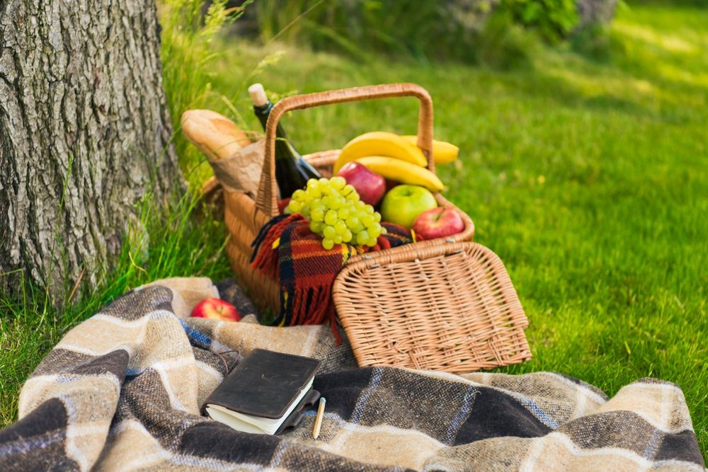 Activiteit | Appeltern Picknick | 1 persoon