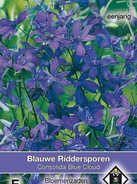 Delphinium consolida Blue Cloud (zaad azuurblauwe ridderspoor, art. 33944)