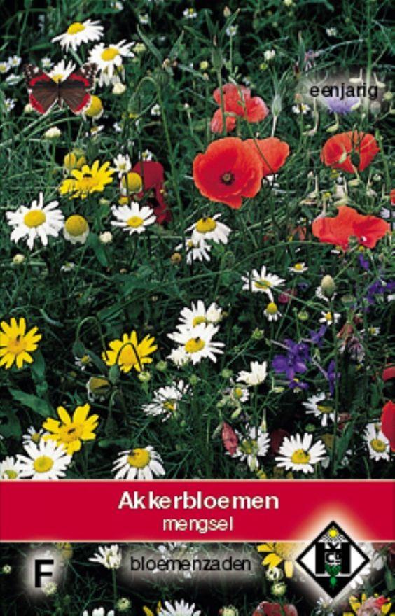 Akkerbloemenmengsel (zaden, art. 36390)